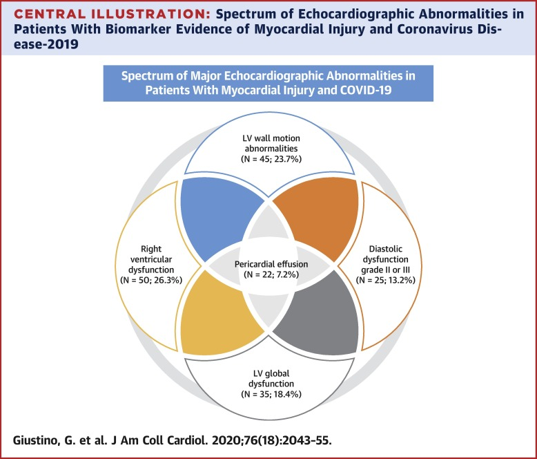 Characterization of Myocardial Injury in Patients With COVID-19